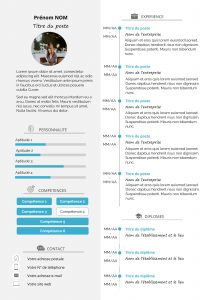 Exemple de CV template